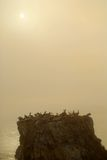 Island off the coast of Pismo Beach California in misty haze of Stock Images