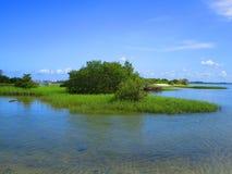 Island off Florida coast. Lagoon florida nature scene stock photo