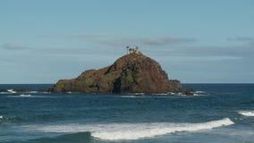 Island off of Hana Bay stock video