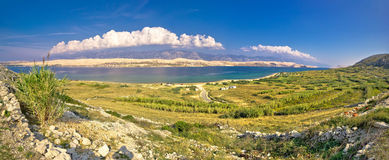 Island of Pag Metajna bay panorama Stock Photos