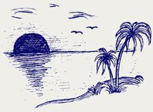 Island palm. Doodle style. Vector Royalty Free Stock Images