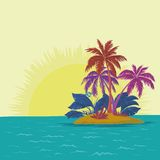 Island with palm and sun Stock Image