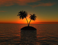 Island with palm  at sunset Royalty Free Stock Photography