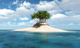 Island with palm tree Stock Image