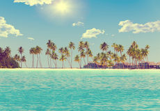 The island with palm trees in the ocean,with  retro effect Royalty Free Stock Image