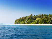 The island with palm trees in the ocean.Sea tropical landscape in a sunny day Stock Photo