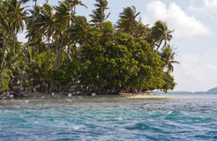 The island with palm trees in the sea through splashes of waves Stock Images