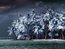 The island with palm trees to the sea, an infrared photo.Sea tropical landscape Stock Photo