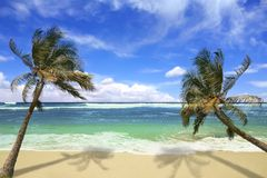 Island Pardise Beach in Hawaii Stock Images