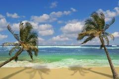 Island Pardise in Hawaii Royalty Free Stock Photos
