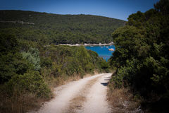 Island path to sea. Path through the forrest leading to sea shore Croatia Stock Image
