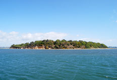 Island in Poole harbour Royalty Free Stock Photography