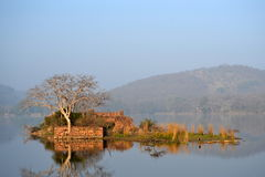 A island at ranthambore Stock Images