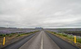 Island-Ringstraße stockfotografie