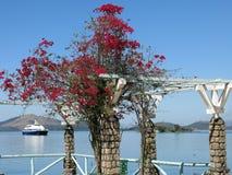 Island in Rio de Janeiro city. Brazil. This island is called Paquet stock photos