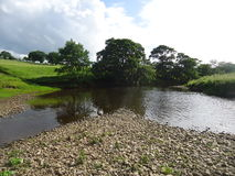 Island in the river Ure. The river Ure near asygarth splits when low revealing a stone island royalty free stock photos