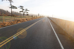 Island Roadway Stock Images