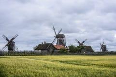 Island saaremaa, estonia, europe, the mills of angla Stock Images