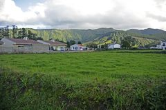 Island of San Miguel, Azores Stock Photography
