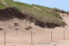 Island sand dunes in the summer Stock Photography