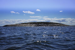 Island in the sea. A rocky island in the blue sea in the afternoon Royalty Free Stock Images