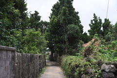 Island settlement road. Road of residential area not paved on remote island of Okinawa Stock Images