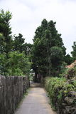Island settlement road. Road of residential area not paved on remote island of Okinawa Stock Photography