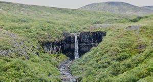 Island, Skaftafell naturreservation och Svartifoss vattenfall royaltyfria foton