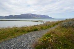 Island - Skagafjördur - norr Island Arkivbilder