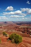 Island In The Sky. View from Island In The Sky, Canyonlands National Park in Utah Stock Photography