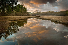 Island Slough at Sunset Royalty Free Stock Images