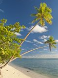 Island in south pacific Royalty Free Stock Photo