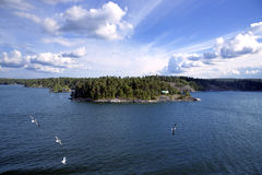 Island in the Stockholm archipelago Royalty Free Stock Photos