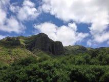 Island summit in paradise. Beautiful green mountain summit against deep blue sky Stock Photography