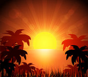 Island and sunrise Royalty Free Stock Image