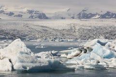 Island. Sydostligt område. Jokulsarlon. Isberg, sjö och glaciär royaltyfri foto