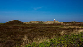 The island of Sylt. Landscape royalty free stock photo