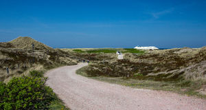 The island of Sylt!!!!. The island of Sylt. landscape royalty free stock photography