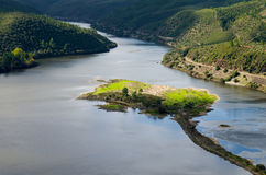 Island in Tagus River at Portas de Rodao Royalty Free Stock Images