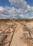 Island of Tavolara. Royalty Free Stock Photography