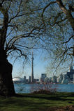 Island toronto view. Spring View to the Toronto sky line from the centre island (Ontario lake royalty free stock photo