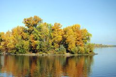 Island with trees. On the river Stock Photo