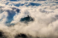 Island of trees above the clouds Stock Images