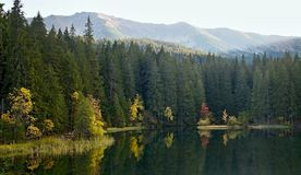 Island with trees in autumn colors with Low Tatras background. Vrbicke lake in Demanovska valley in Slovakia. Royalty Free Stock Photos