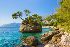 Island and trees in Brela, Croatia Stock Images