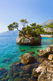 Island and trees in Brela, Croatia Stock Photos