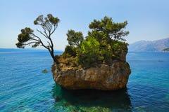 Island and trees in Brela, Croatia Stock Photos