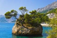 Island and trees in Brela, Croatia Royalty Free Stock Photography