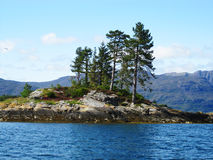 Island with trees in Scotland.  Royalty Free Stock Photos