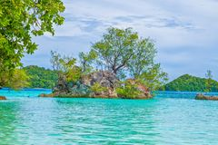 Island trip to turquoise waters at Palau. During daytime royalty free stock images